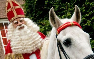 Sinterklaas Needs Helpers!