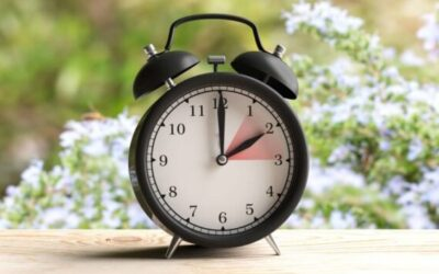 Clocks Spring Forward this Weekend!